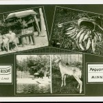 Pequot Lakes, MN, Whitefish Lake, Wallick's Resort, ca 1940