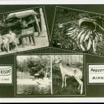 Pequot Lakes, MN, Whitefish Lake, Wallick's Resort, ca 1940